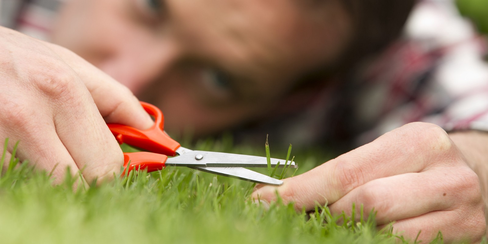Image of a man cutting his lawn with scissors to ensure each blade is perfect
